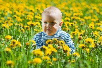 بهار و گیاهان دارویی