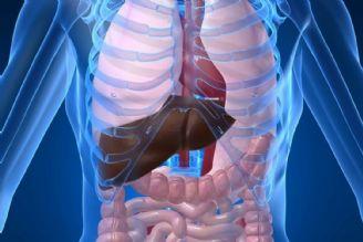 بیماری های کبدی و گوارش