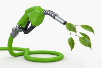 منهای نفت - اقتصاد سوختهای فسیلی و زیستی