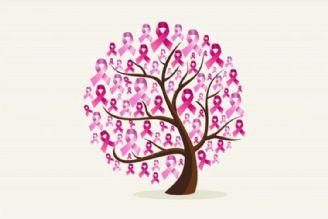 در برنامه نبض سه شنبه هشتم آبان درباره سرطان سینه التهابی  صحبت شد