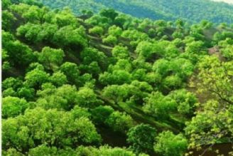 جاذبه گردشگری شهرستان کلیبر
