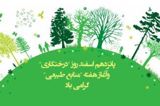 پانزدهم اسفند روز «درختكاری» و آغاز هفتهی «منابع طبیعی»