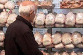 مصرف سرانه مرغ افزایش پیدا کرده است