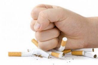 در  برنامه نبض چهارشنبه چهارم دی درباره مضرات سیگار و معرفی رشته فلوشیپ درد صحبت شد