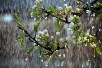 بارشها تا یكشنبه ادامه دارد/ خطر سیلابی شدن رودخانهها