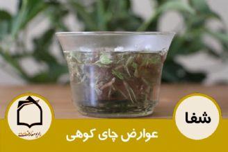 عوارض چای کوهی