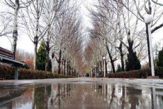 ورود سامانه بارشی با برف و كولاك به ایران در هفته آینده